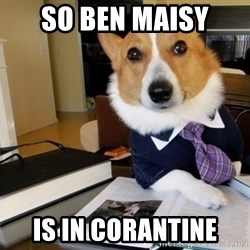 Dog Lawyer - so ben maisy is in corantine