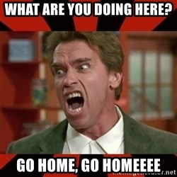 Arnold Schwarzenegger 1 - What are you doing here?  Go home, go homeeee