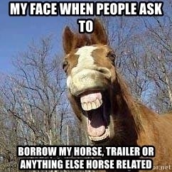 Horse - My face When people ask to  Borrow my horsE, Trailer or anything else horse related