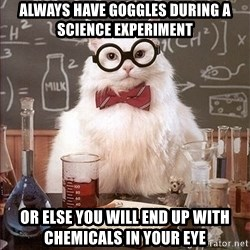 Science Cat - Always have goggles during a science experiment or else you will end up with chemicals in your eye