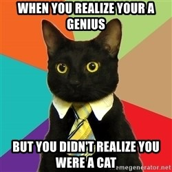 Business Cat - when you REALIZE your a genius but you didn't realize you were a cat