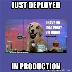 I don't know what i'm doing! dog - Just deployed in production