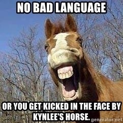 Horse - no bad language or you get kicked in the face by Kynlee's horse.