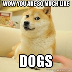 wow such doges - Wow you are so mucH like Dogs