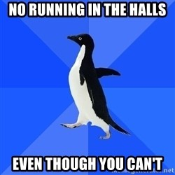 Socially Awkward Penguin - No running in the halls Even though you Can't