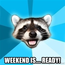 Lame Pun Coon - Weekend is.... Ready!