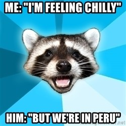 """Lame Pun Coon - ME: """"I'm FEELING CHIlLY"""" HIM: """"BUT WE're IN PERU"""""""