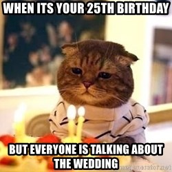Birthday Cat - When its your 25th birthday but everyone is talking about the wedding