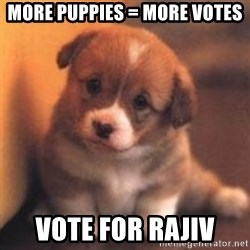 cute puppy - More Puppies = More votes Vote for Rajiv