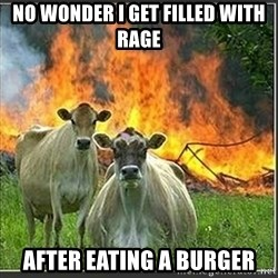 Evil Cows - no wonder i get filled with rage after eating a burger