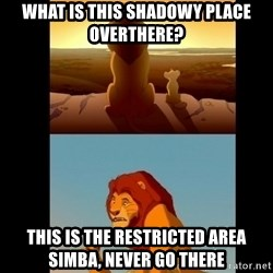Lion King Shadowy Place - What is this shadowy place  overthere? This is the restricted area simba, never go there