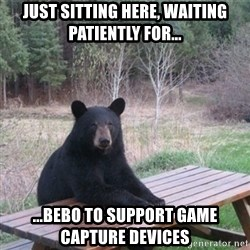 Patient Bear - Just sitting here, waiting patiently for... ...bebo to support game CAPTURE devices