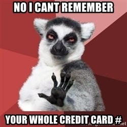 Chill Out Lemur - no i cant remember your whole credit card #