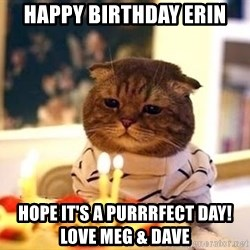 Birthday Cat - Happy birthday erin Hope IT'S a purrrfect day!         LOVE Meg & Dave