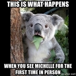 Koala can't believe it - This is what happens when you see michelle for the first time in person