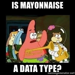 Patrick Star Instrument - IS mayonnaise  a data type?