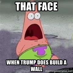 D Face Patrick - That face when trump does build a wall
