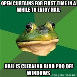 Foul Bachelor Frog - Open Curtains for first time in a while to enjoy hail  HAIL IS CLEANING BIRD POO OFF windows