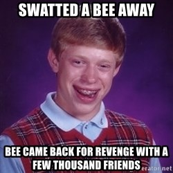 Bad Luck Brian - swatted a bee away bee came back for revenge with a few thousand friends