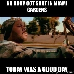 Ice Cube- Today was a Good day - No body got shot in miami gardens Today was a good day