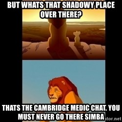 Lion King Shadowy Place - But whats that shadowy place over there? Thats the cambridge medic chat. you must never go there simba