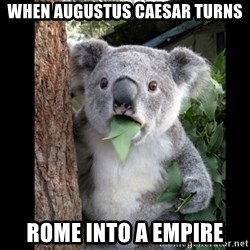 Koala can't believe it - when augustus caesar turns rome into a empire