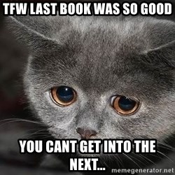 Sadcat - TFW last book was so Good you cant get into the next...