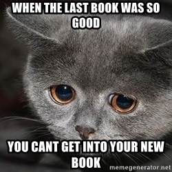 Sadcat - when the last book was so good you cant get iNto Your new Book
