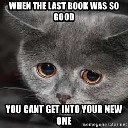 Sadcat - when the last book was so good you cant get iNTo your new one