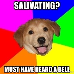 Advice Dog - salivating? Must have heard a bell