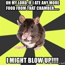 Survivor Rat - OH my lord, if i ate any more food from that chamber...... I might blow up!!!!