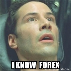 i know kung fu - I know  forex