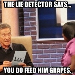 Maury Lie Detector - The Lie detector says,,, YOu do feed him grapes.