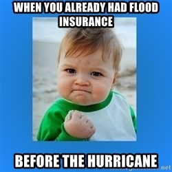 yes baby 2 - when you already had flood insurance before the hurricane