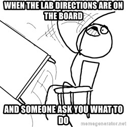 Desk Flip Rage Guy - when the lab directions are on the board and someone ask you what to do