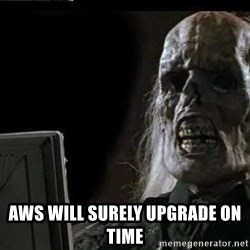OP will surely deliver skeleton - AWS WILL SURELY UPGRADE ON TIME