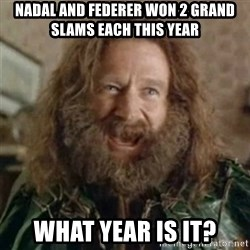 What Year - Nadal and federer won 2 grand slams each this year What year is it?