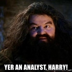 Yer A Wizard Harry Hagrid - Yer an analyst, Harry!