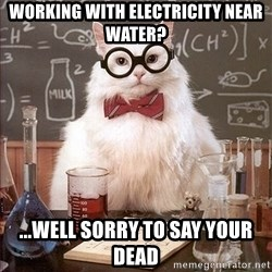 Science Cat - Working with ELECTRICITY near water? ...well sorry to say your dead