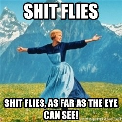 Sound Of Music Lady - Shit flies Shit flies, as far as the eye can see!