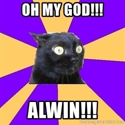 Anxiety Cat - Oh my god!!! Alwin!!!