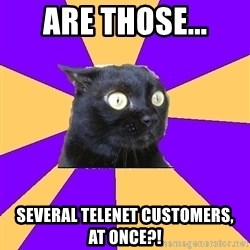 Anxiety Cat - Are THOSE... Several telenet CUSTOMERS,    at once?!