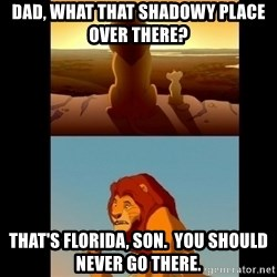 Lion King Shadowy Place - Dad, what that shadowy place over there? That's florida, son.  You should never go there.