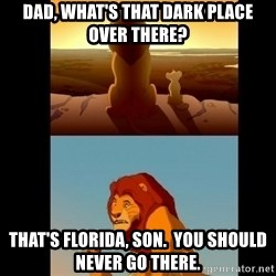 Lion King Shadowy Place - Dad, what's that dark place over there? That's florida, son.  You should never go there.
