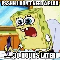 Spongebob What I Learned In Boating School Is - psshh I don't Need a plan .......30 hours later