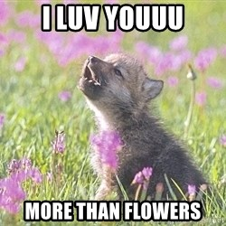 Baby Insanity Wolf - I luv youuu more than flowers