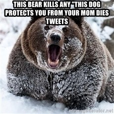 "Cocaine Bear - This bear kills any ""this dog prOtects you from Your mom DieS tweEts"