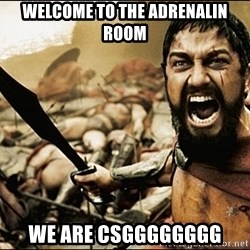This Is Sparta Meme - Welcome to the adRenalin room We are CSGggggggg