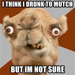 Crazy Camel lol - I think i drunk To mutch But im Not SuRe