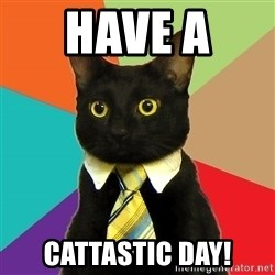 Business Cat - Have A  Cattastic Day!